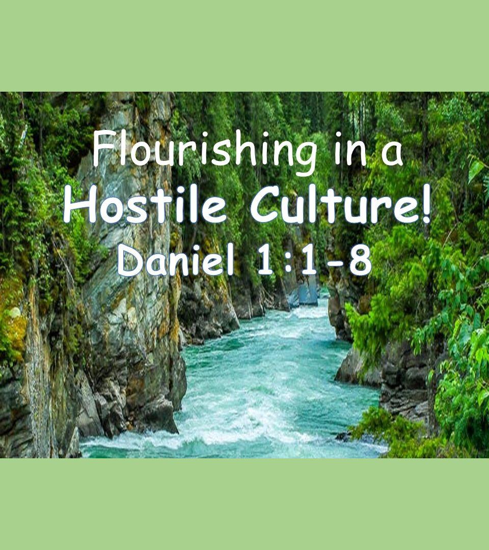 Flourishing in a Hostile Culture